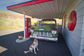 One of my personal favorites.  This sweet fella was kind enough to pose for me in front of the antique truck outside the vintage Texaco station in rural Washington State.