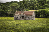 A really cool old, abandoned schoolhouse at Boyd's Creek in rural Tennessee.  This is not too far from Seymour.  I don't much about the history of this place, but it's in a beautiful setting, surrounded by fields of flowers and grazing cattle.