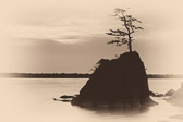 A tiny rock island in Tillamook Bay, on the coast of Oregon. This has been processed as an antique plate style.