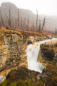 Marble Canyon in Kootenay National Park, Canada. Notice the damage to the trees from recent fires.
