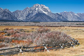 A buck rail fence leads your eye into the magnificence of the Grand Tetons. Pioneers built these buck rail fences because the ground was too rocky to dig fence post holes.  They fit in with the rugged landscape so well.
