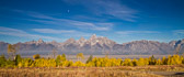 A very wide view of the Teton Range with a forest of cottonwood trees in the foreground...I liked how the tops of the trees mimicked the Teton range.
