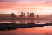 Sunrise at Alum Creek in Yellowstone National Park...one of the best places for sunrise in the park.