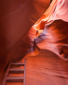Inside Antelope Canyon, a slot canyon just Outside of Page, Arizona.  The canyon walls are 130 feet high, and in some place only about 1 1/2 feet wide. I chose to include part of one of the ladders so you can see how tight it is to maneuver in the canyon.