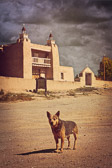 Las Trampas is an unincorporated community in Rio Arriba County, New Mexico, United States. Located on the scenic High Road to Taos, it is halfway between Santa Fe in the south, and Taos to the north. This dog seemed to be guarding the mysterious old San José de Gracia Church.