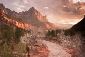 ZIon National Park comes equipped with its own inherrent sense of drama.  Throw in a late afternoon storm near sunset, and the drama ratchets up even more.