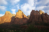 As the sun rises in Zion National Park, it slowly illuminates the 900+ foot cliffs.